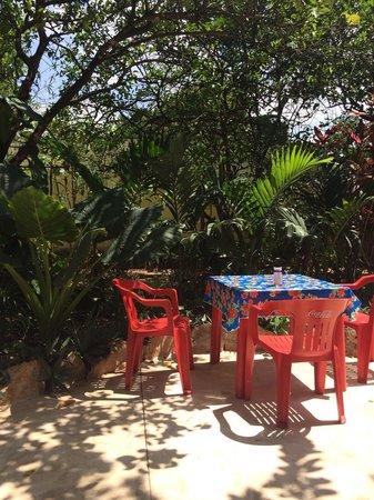Yerbabuena del Sisal Restaurante : Garden space