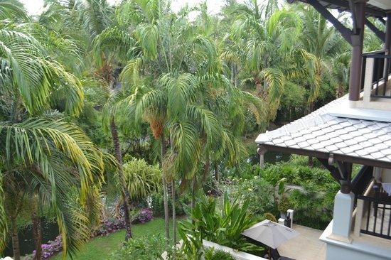 Marriott's Mai Khao Beach - Phuket : Вид из номера