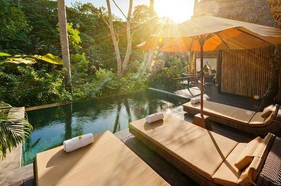 Fivelements Bali Retreat : Bidadari sleeping suite pool