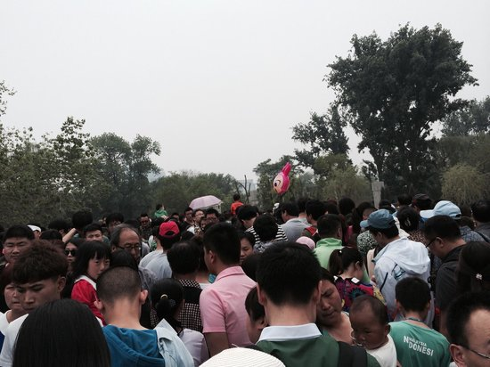 Beijing Zoo: Crowds on a weekend.
