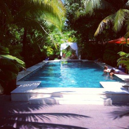 The Pavilion: Swimming pool at Pavilion