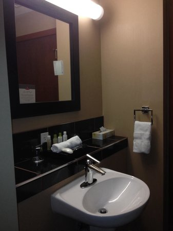 Podollan Inn & Spa: Large shelf in bathrooms. Both units had a large shelf to put your necessities on.