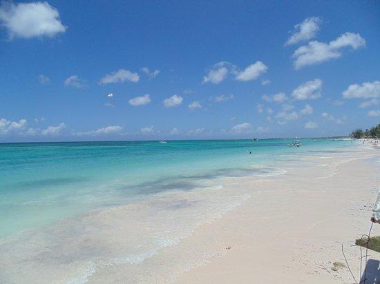 Vista Sol Punta Cana: Playa