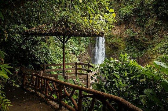 La Paz Waterfall Gardens: ceremony site (near the Magia Blanca waterfall)