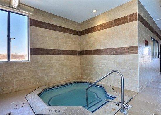 Comfort Suites Auburn Hills: MIIndoor Pool View