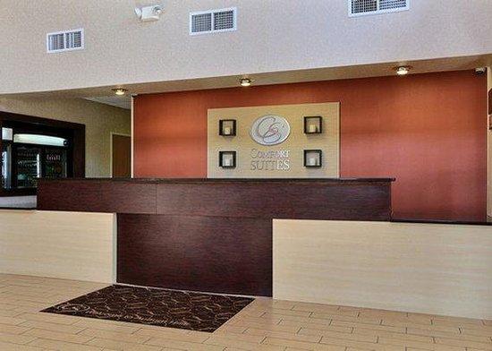 Comfort Suites Auburn Hills: MIFront Desk View