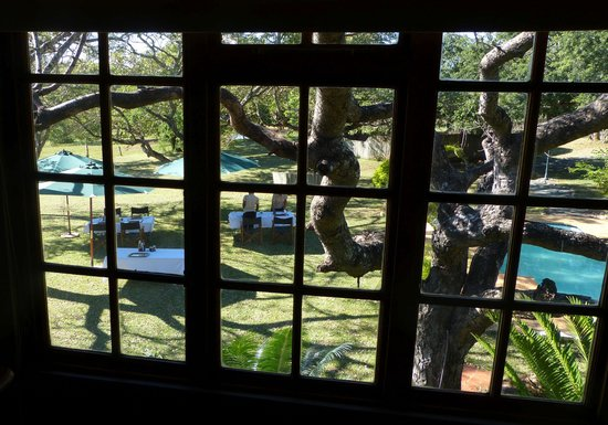 Zebra Hills Safari Lodge: From our bedroom window, a view of the girls setting up the breakfast tables.  You can just see