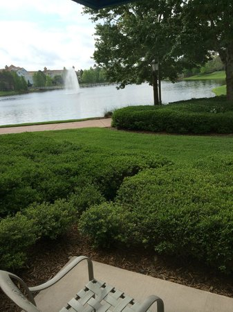 Disney's Saratoga Springs Resort & Spa: Hotel grounds