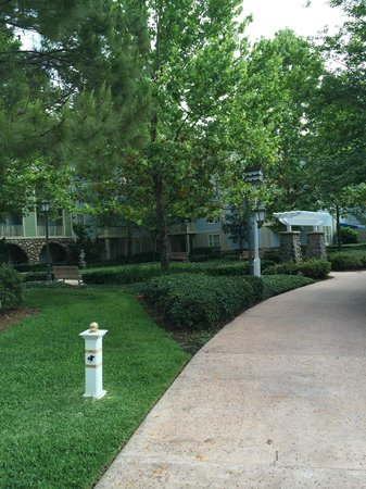 Disney's Saratoga Springs Resort & Spa: Grounds