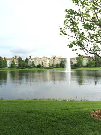 Disney's Saratoga Springs Resort & Spa: Hotel grounds