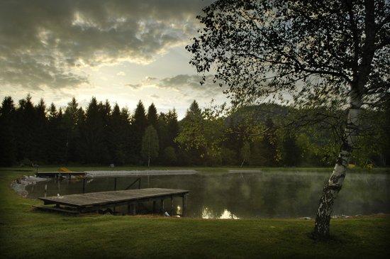 Naturwellness Hotel Moorquell : Morgens am See