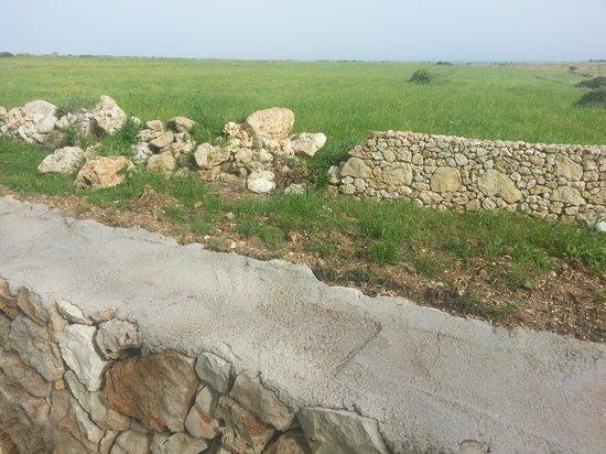 Agriturismo Masseria Terra di Otranto : La campagna e il mare