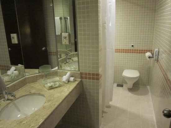 Holiday Inn Singapore Atrium: Dated bathroom
