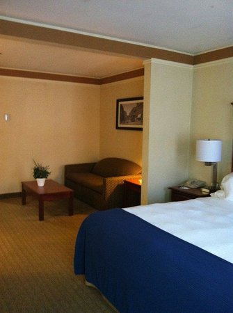 Holiday Inn Express Hotel & Suites : King Bed Suite