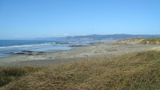 MacKerricher State Park: Amazing beach and old rail bed/trail above - make it a loop!