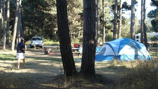 MacKerricher State Park: Huge campsites, well separated