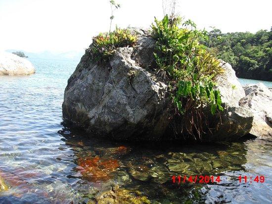 Vila Galé Eco Resort de Angra: praia do hotel