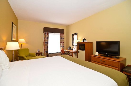 Holiday Inn Express Stone Mountain: King Bed Guest Room