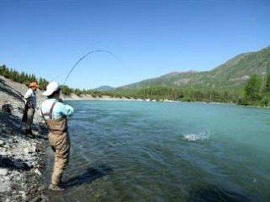 Alaska Fishing Lodge - Soldotna Bed and Breakfast Lodge: ShoreFishing