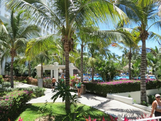 Hotel Riu Emerald Bay: Glorious palms grace both the pool and beach areas
