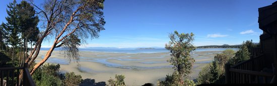Tigh-Na-Mara Resort : View from the balcony at low tide!