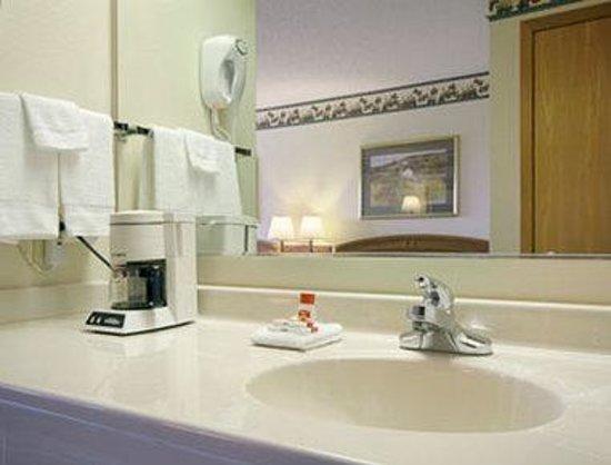 Super 8 Le Claire/Quad Cities: Bathroom