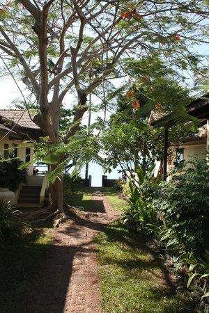 Villa Tanamera: Weg zum Strand