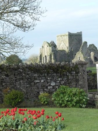 O'Briens Cashel Lodge: Hore Abbey