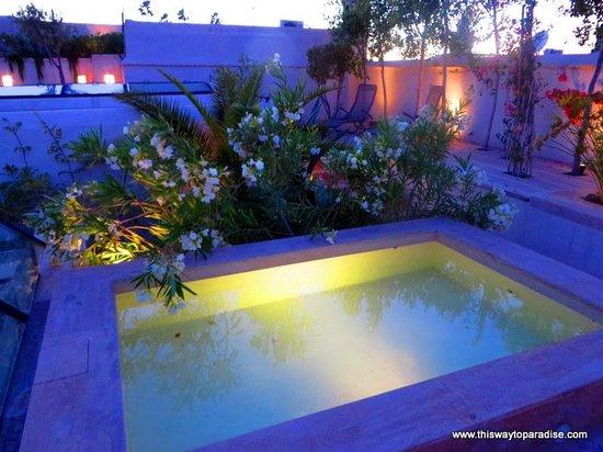 Riad Camilia: Pool