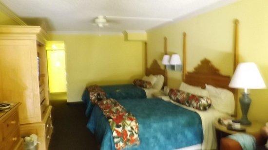 Sun Viking Lodge: Room