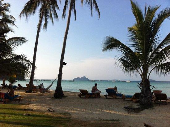 Phi Phi Island Village Beach Resort : Vista da piscina