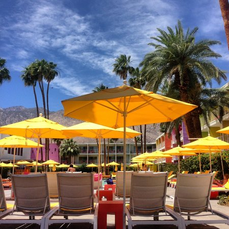 The Saguaro Palm Springs: Relaxing times by the pool