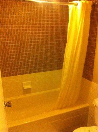 Canadas Best Value Inn - St. Catharines: tub