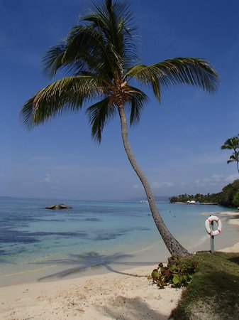 Luxury Bahia Principe Cayo Levantado: shallow side