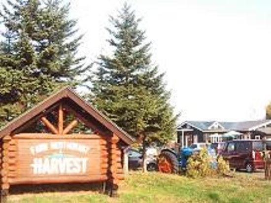 Harvest: 大きな駐車場があります。