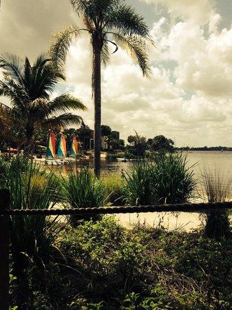Club Med Sandpiper: The bay