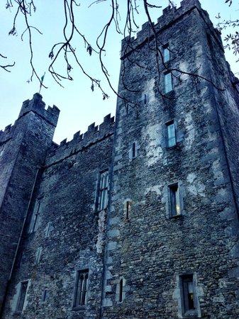 Bunratty Castle : Medieval castle