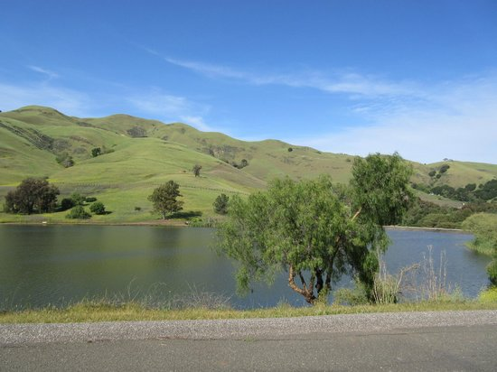 Ed Levin County Park: Ed Levin Country Park (Hiking, Horse Riding) Milpitas, CA