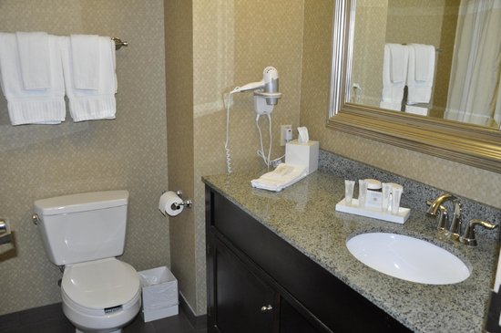 Riverwind Hotel: Bath in Room 324