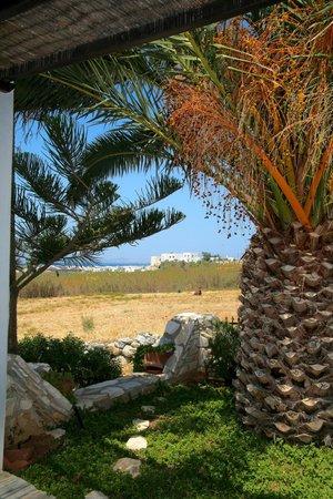 Aeolos Sunny Villas: Garden