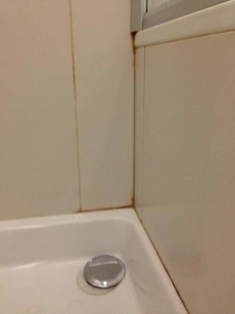 UNA Hotel Cusani : Shower had moulds