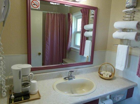 Country Squire Motel : Bathroom