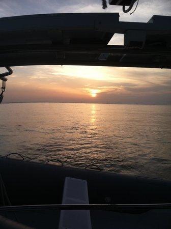 Cool Beans Cruises: beautiful sunset