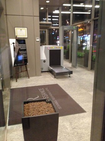 Renaissance Istanbul Polat Bosphorus Hotel: security scanner as entering hotel