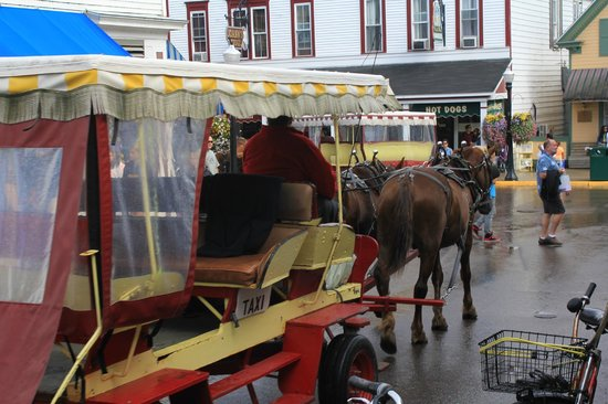 Mackinac Island State Park: carriage ride