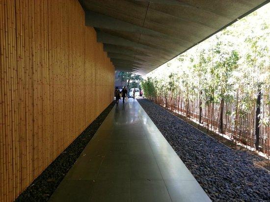 Nezu Museum: 圧巻の廊下
