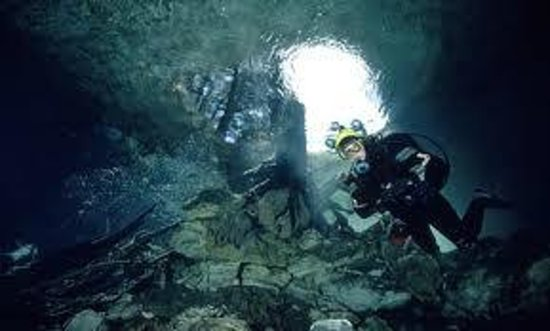 Pond diving picture of mount gambier south australia for 333 south terrace adelaide