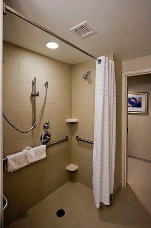 إمباسي سويتسس دينفر داونتاون: Roll-in Shower