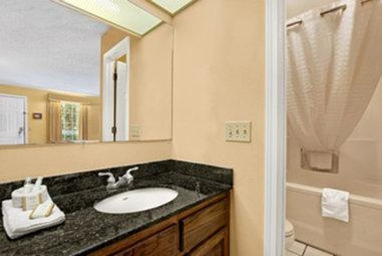 Baymont Inn & Suites Ozark: Bathroom