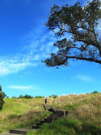Mount Eden : Walk up to the summit of Mt Eden
